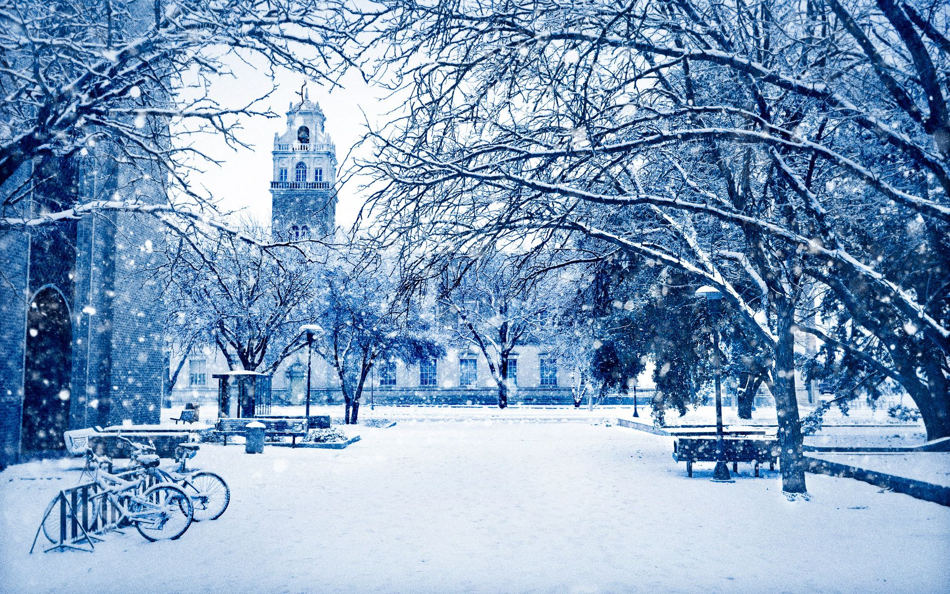 Texas Tech Administration building in winter | My Texas | Pinterest ...