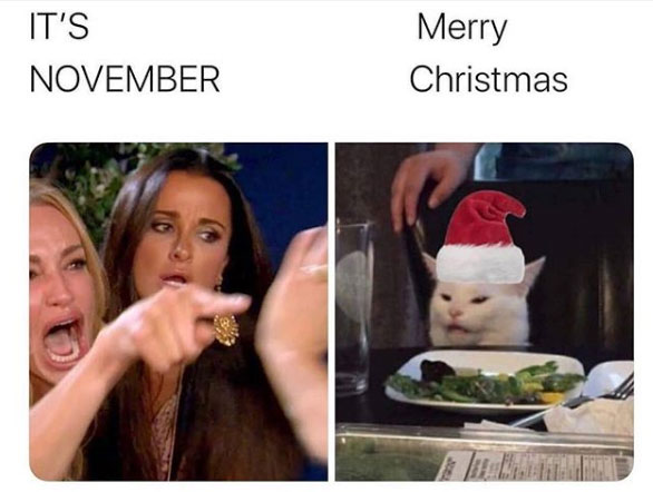 Woman Yelling At A Cat Meme Where Taylor Armstrong Is Yelling It S November And Smudge The Cat Is Weari Christmas Memes Funny Funny Cat Memes Christmas Memes