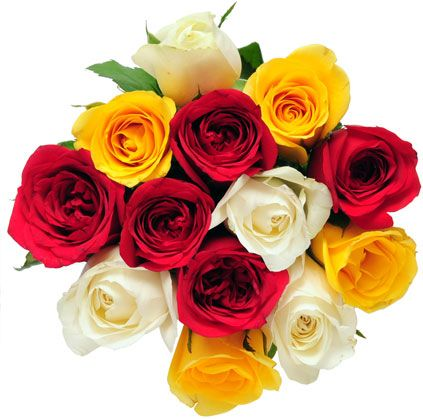 Send new year flowers to your girlfriend new year gifts send new year flowers to your girlfriend negle Images