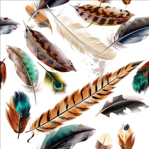 Fashion feathers seamless pattern vectors 03 - https://www.welovesolo.com/fashion-feathers-seamless-pattern-vectors-03/?utm_source=PN&utm_medium=wesolo689%40gmail.com&utm_campaign=SNAP%2Bfrom%2BWeLoveSoLo
