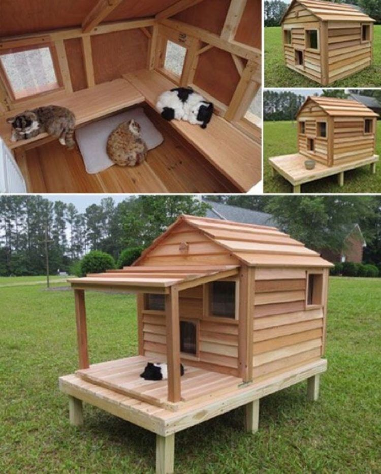 52+ DIY Outdoor Cat House Ideas For Winters And Summer