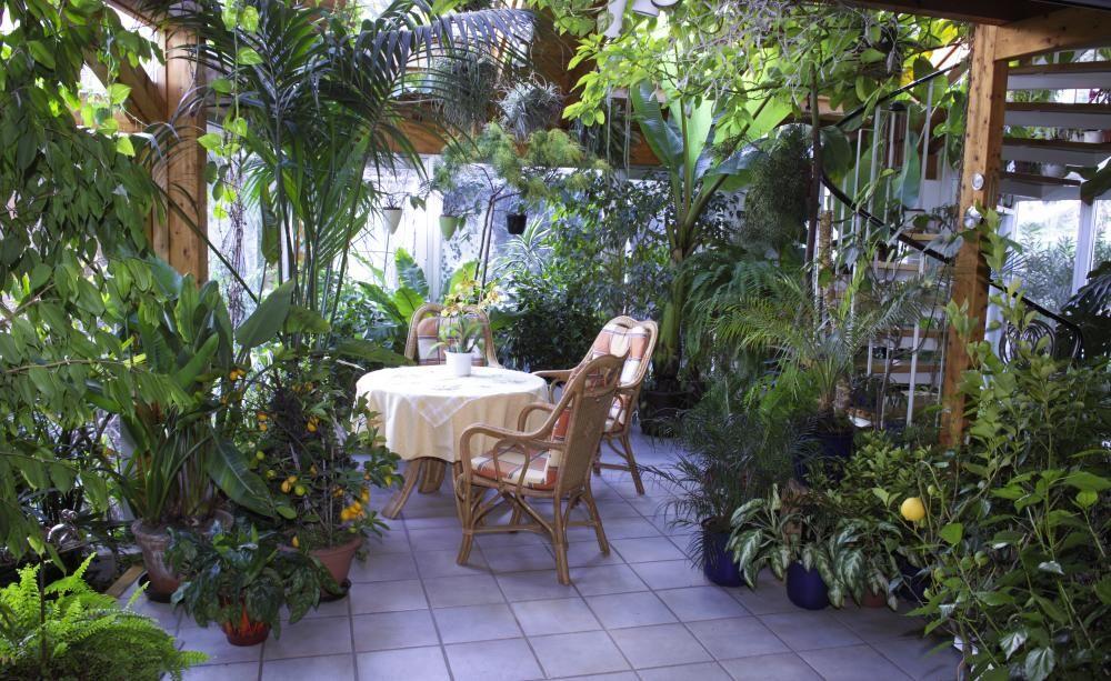 Wintergarten - Pflanzen, Gestaltung und Tipps Gardens - tipps pflege pflanzen wintergarten