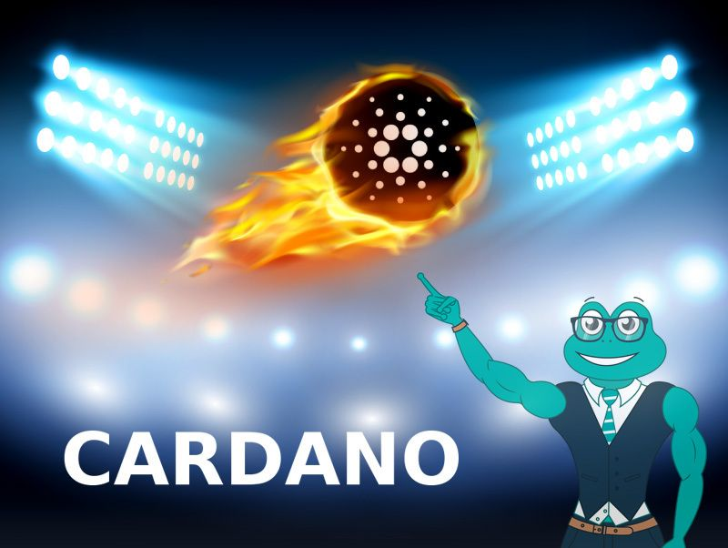 Cryptocurrency of Cardano (ADA). Race for leadership