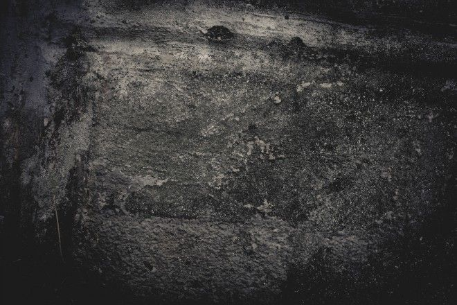 Free Texture Friday Gritty Grunge Wall Stockvault Net Blog Free Textures Purple Area Rugs Textured Walls
