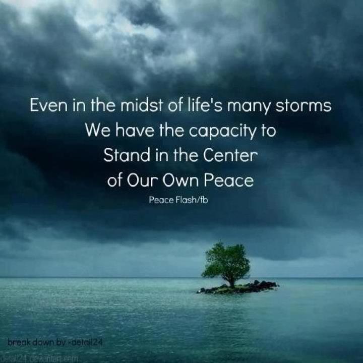 jesus calms the storm reflection
