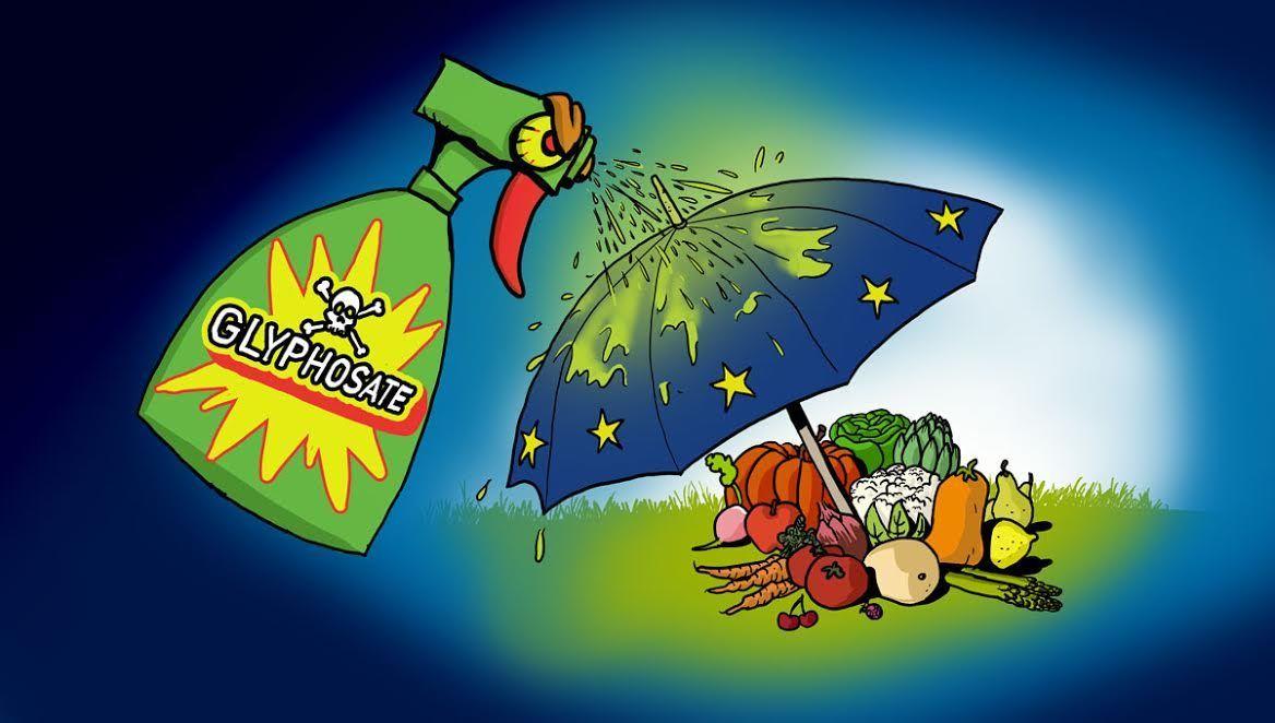 Francia Votará En Contra De La Renovación Del Glifosato Libres De Contaminantes Hormonales Francia Contaminantes Ecologismo