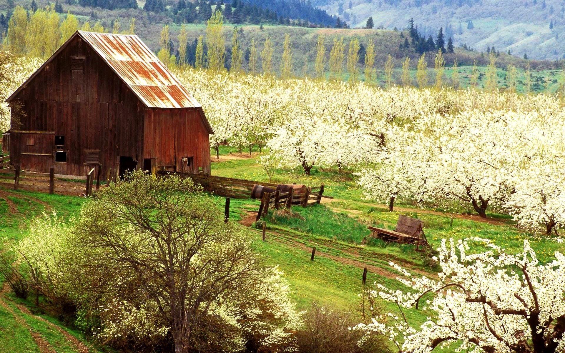 Free Desktop Backgrounds For Spring Farmskringers Com Free Download Best Hd Wallpapers And Pictures Old Barns Spring Scene Barn