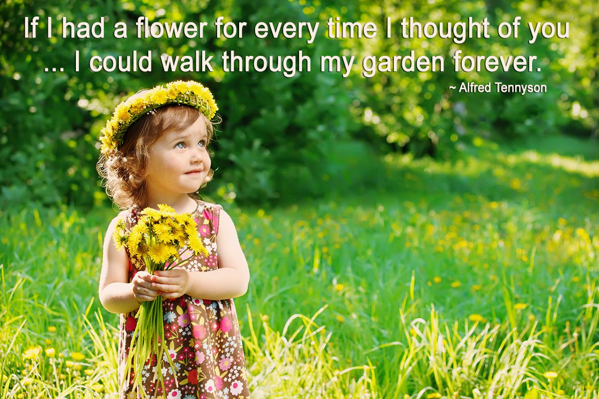 If I had a flower for every time I thought of you ... I ...