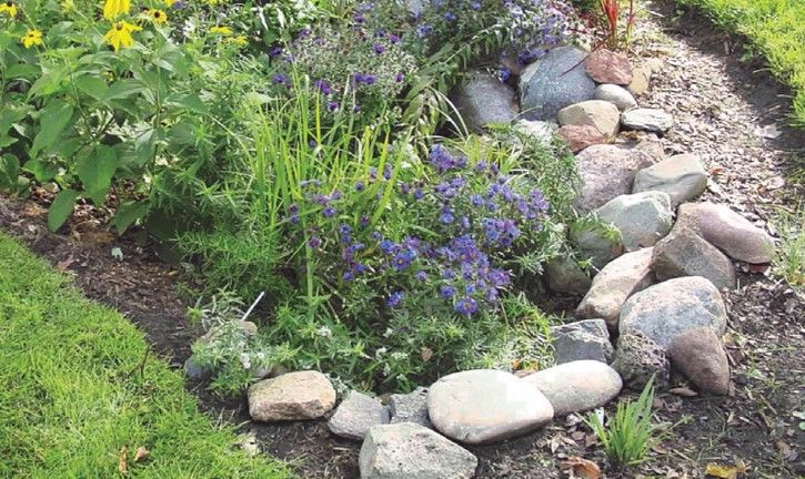 Stones In The Garden Rain garden basics large stones can be placed on the perimeter to rain garden basics large stones can be placed on the perimeter to reinforce the rain garden during storms landscaping pinterest gardens workwithnaturefo