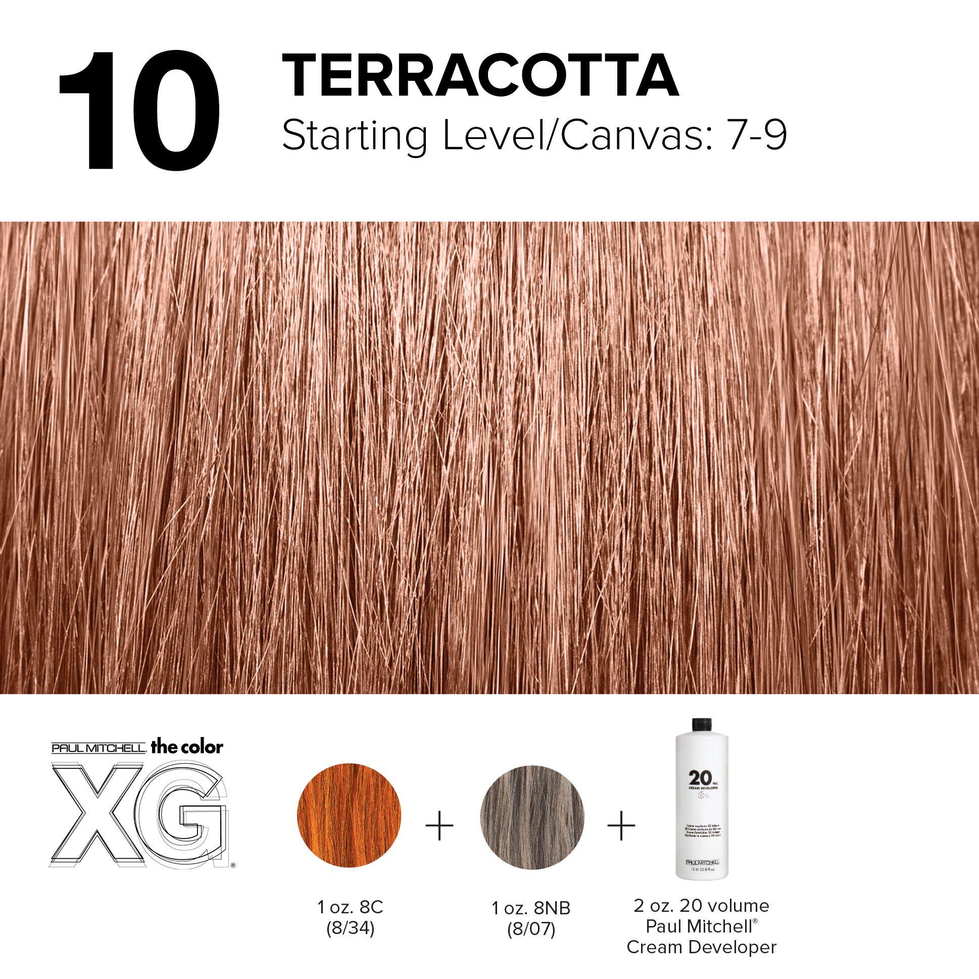 10 Terracotta Paul Mitchell Color Hair Color Formulas Red Violet Hair Color