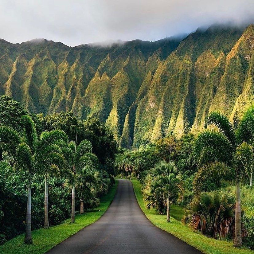 "@travelingtheworlddaily Oahu, or ""The Gathering Place"" 🏔🏝 What's your favourite Hawaiian island? 💚🇺🇸 📍: Oahu, Hawaii 👉🏽: @travelingtheworlddaily #hawaii #usa #hawaiilife #hawaiian #hawaiistagram #venturehawaii #madeinhawaii #travelhawaii #cute #lethawaiihappen #happy #nakedhawaii #glimpseofhawaii #oahuhawaii #mauihawaii #naturephotography #hawaiianstyle #hawaiiphotographer #kauai #gohawaii #love #bigislandhawaii #hawaiitrip #travelphotography #Oahu #explorehawaii #love #hawaiiliving #vis"