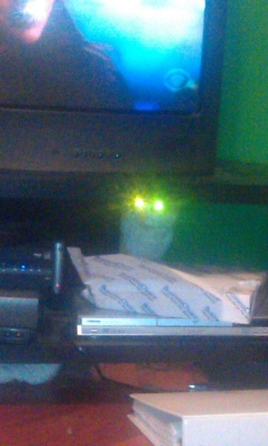 Pic of cat hiding captures major eyeshine!