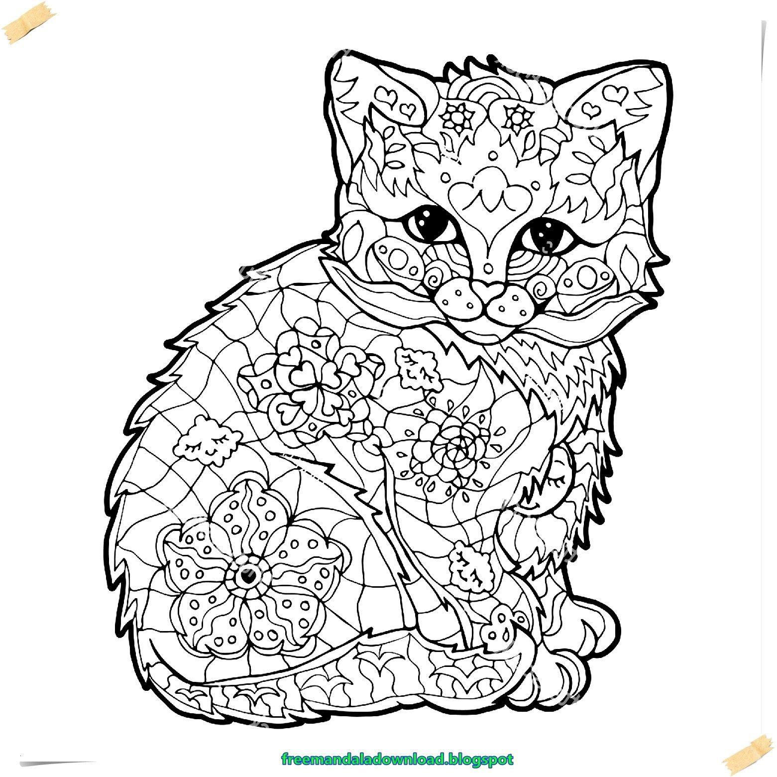 neu malvorlagen kostenlos tiere katzen   color, photo