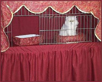 Cat Show Curtains