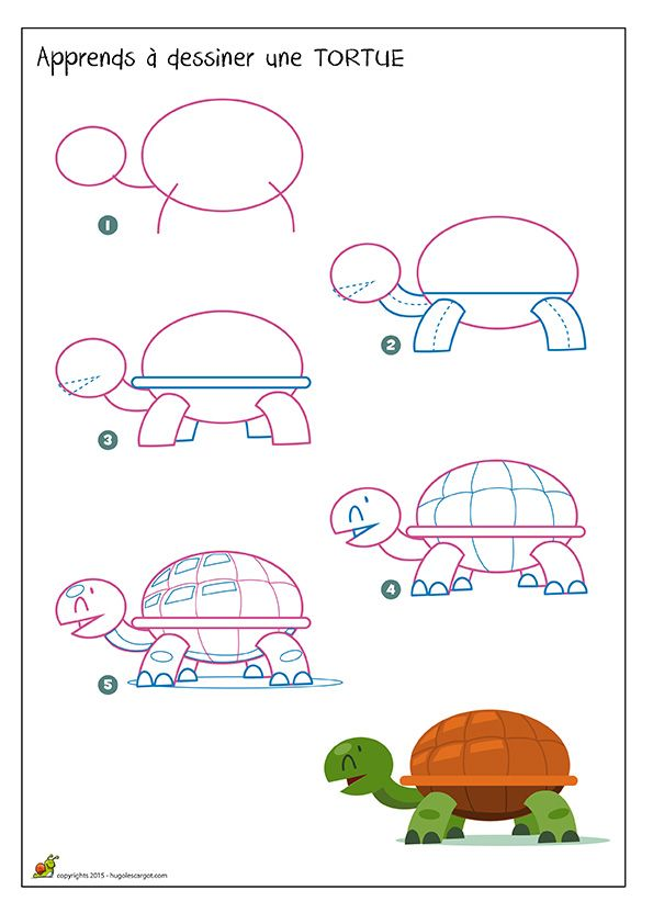 Apprends dessiner une tortue how to draw sea animals pinterest inspiration - Comment dessiner un ane facilement ...