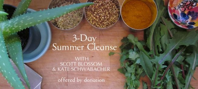 Free donation based summer cleanse pdf kate schwabacher yoga and free donation based summer cleanse pdf kate schwabacher yoga and ayurveda forumfinder Images