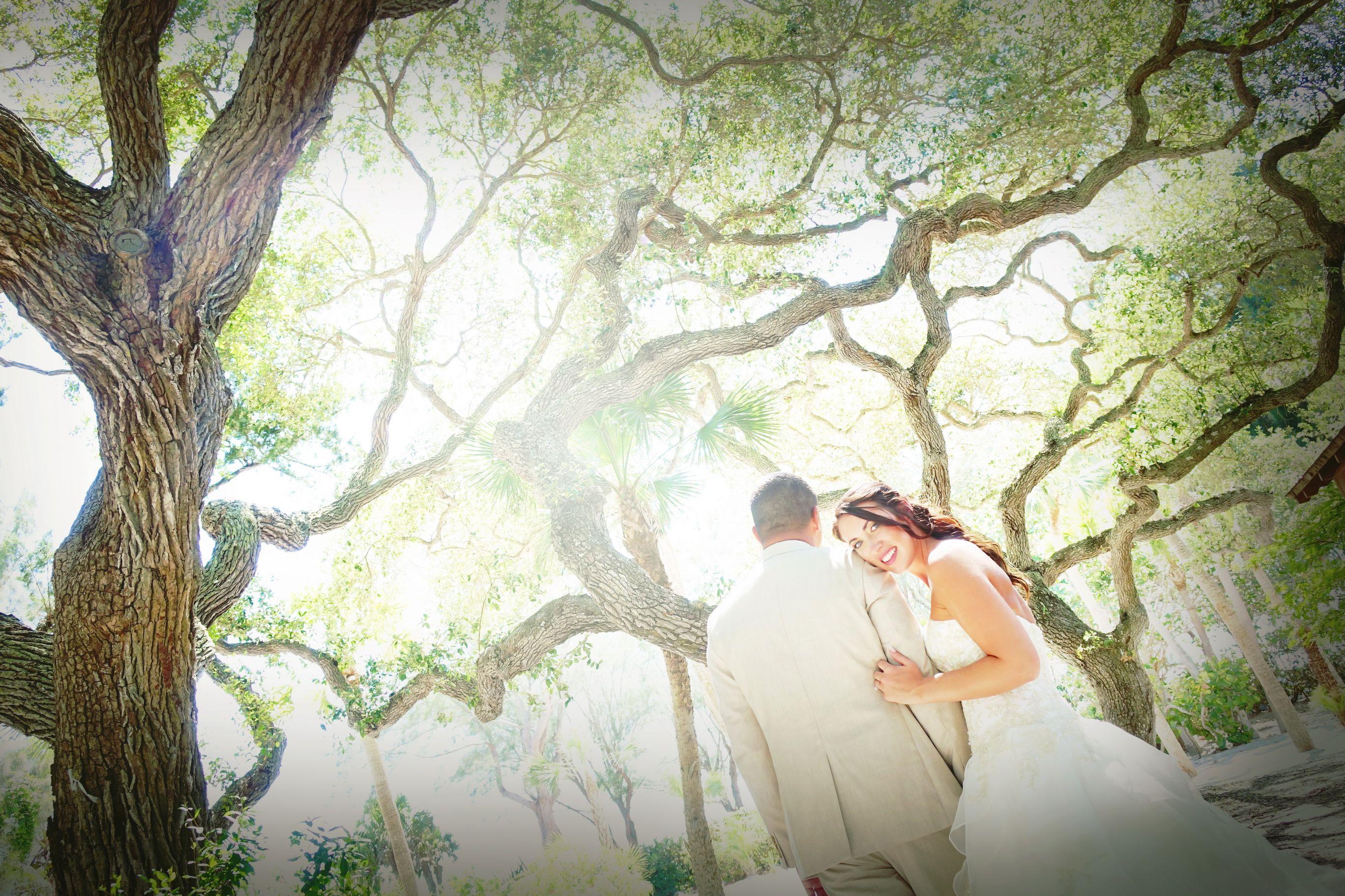 #outdoor wedding #garden ceremony #gold wedding #garden bride #garden wedding poses  #Florida destination wedding