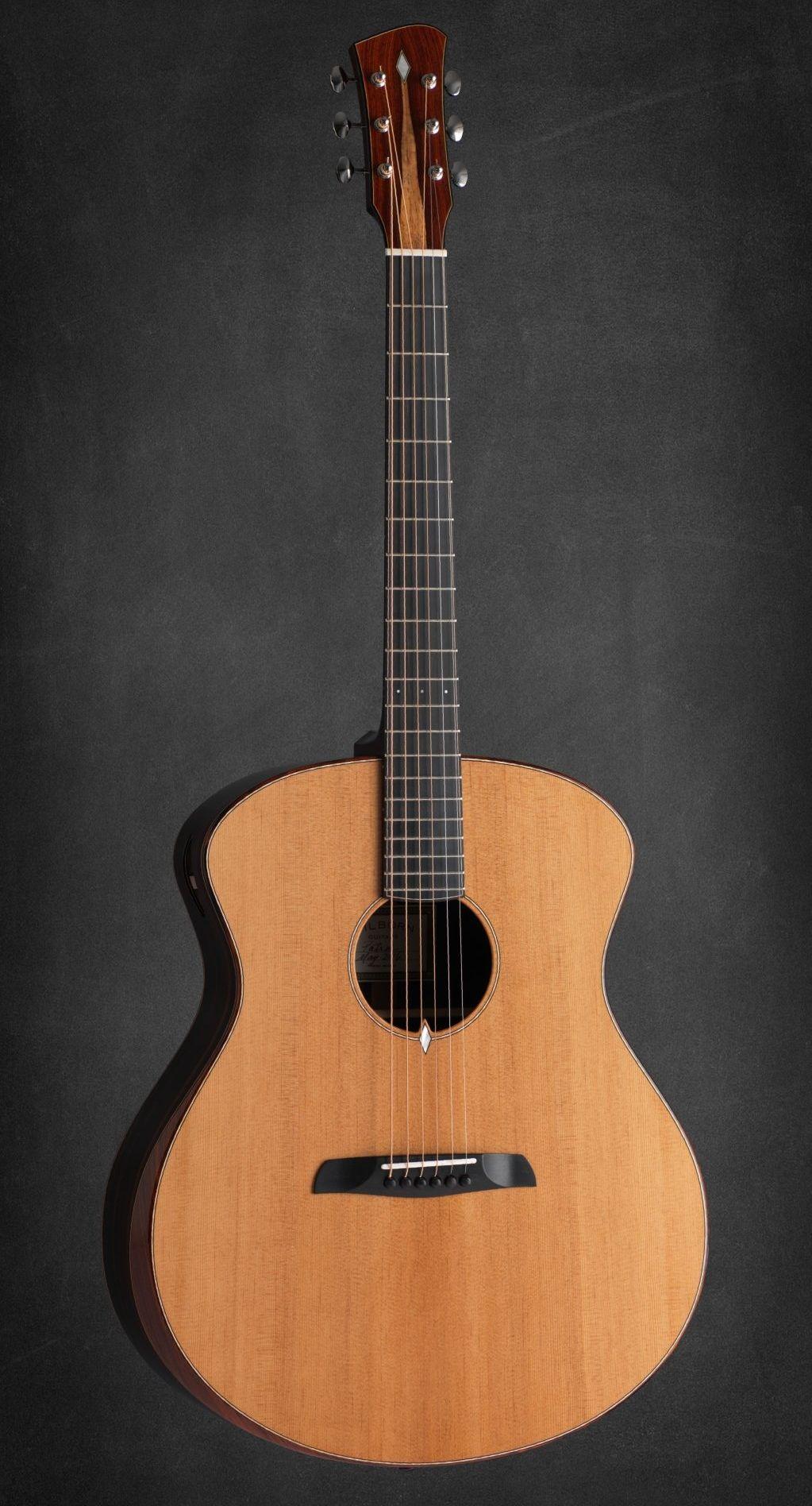 nevada guitar Reno vintage