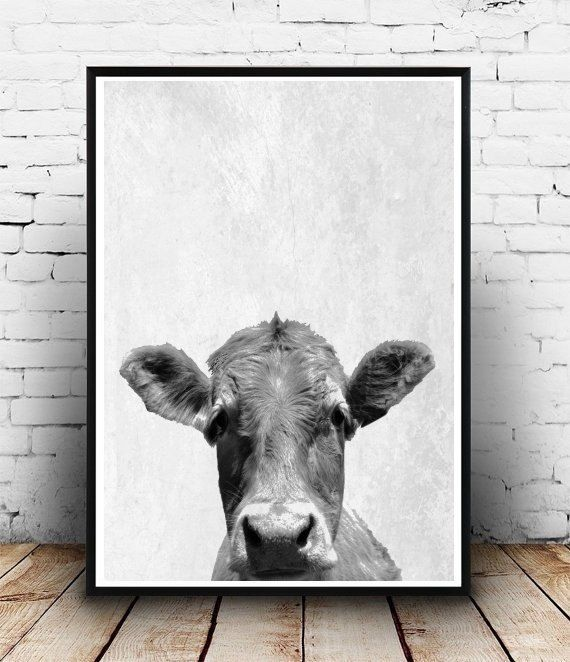 Black Cow Wall Decor : Cow print photo printable art farm animals