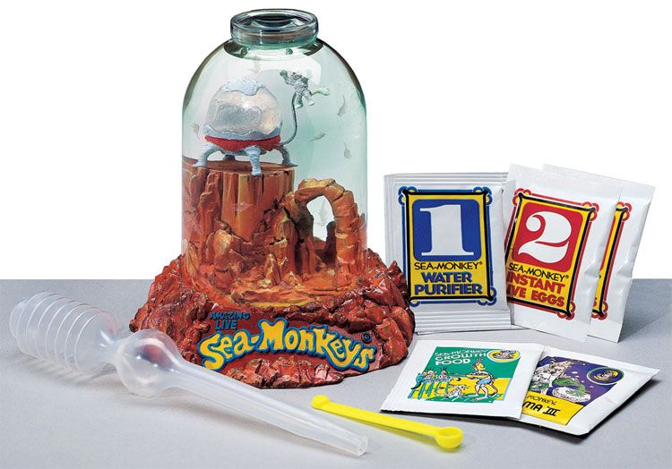 SeaMonkeys On Mars Best Classic & Retro Toys for Ages 6
