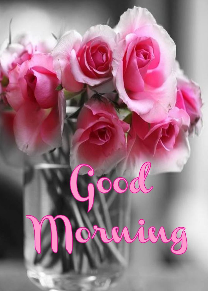 Good Morning Have Nice Day With Beautiful Enchanting Red Roses Image Good Morning Roses Good Morning Flowers Rose Good Morning Images Flowers