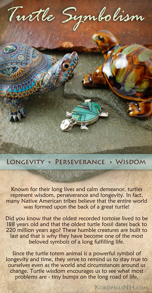 The Turtle Is A Native American Symbol Of Wisdom Perseverance