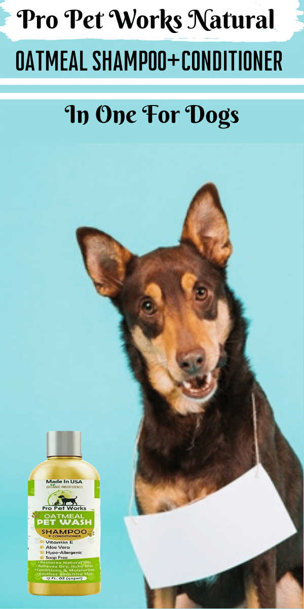 Natural Oatmeal Shampoo Conditioner In One For Dogs Cats Cat