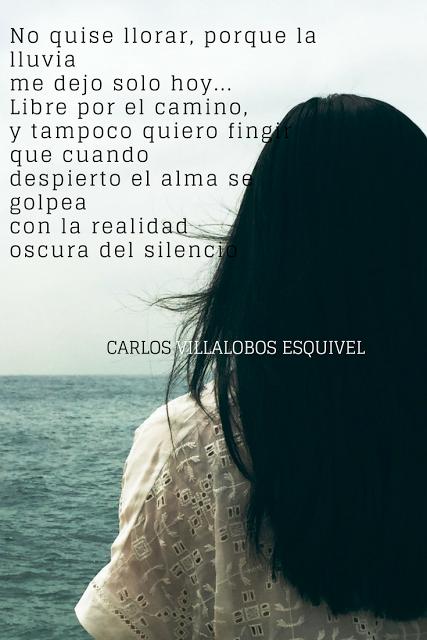 Entre Los Versos De Carlos: Solamente quise volverte a sentir