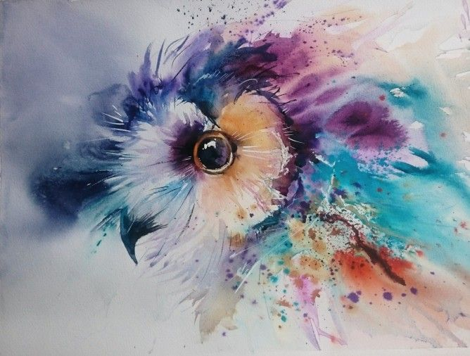 Dragonfly Prints  x 4 pair of owls Watercolour Owl Kingfisher in mounts NEW