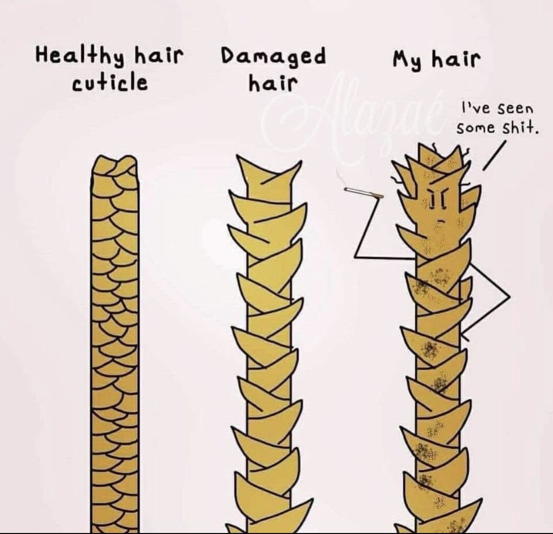 Pin By Shirley Leong Hair On Hair Memes Hairstylist Quotes Hair Humor Natural Hair Growth Tips