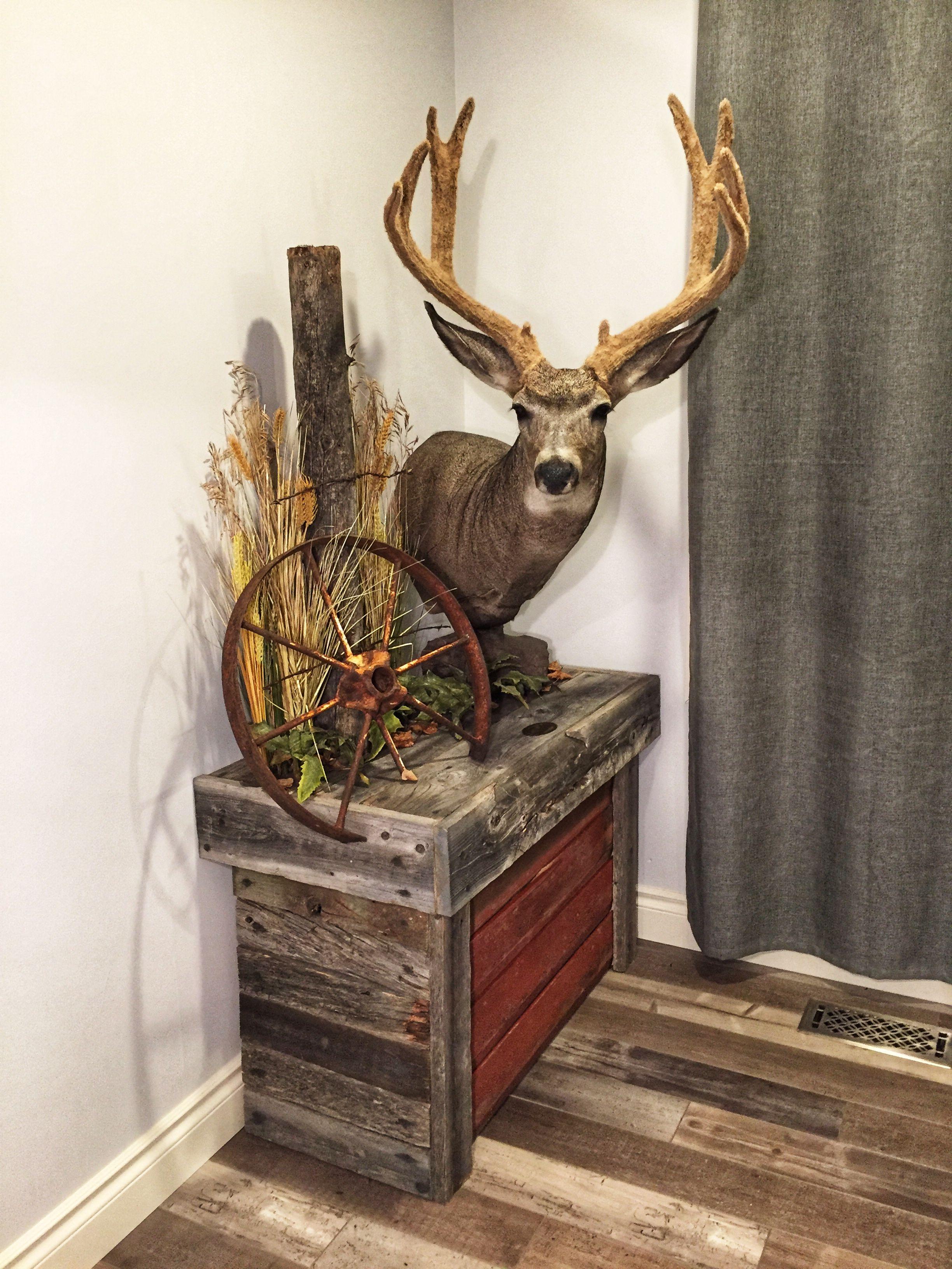 Pin By Tom Koenig On Trophy Rooms