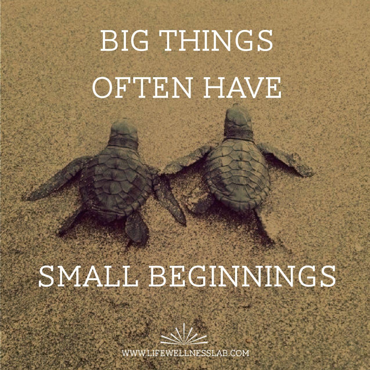 Small beginnings big things motivation turtles quotes motivation turtles quotes wellness mindset biocorpaavc Choice Image