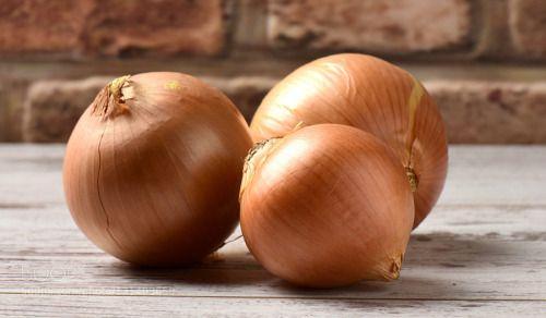 onions by KorkutDogan  IFTTT 500px beautiful beauty closeup food fresh green healthy indoor leaf natural onion organic pl