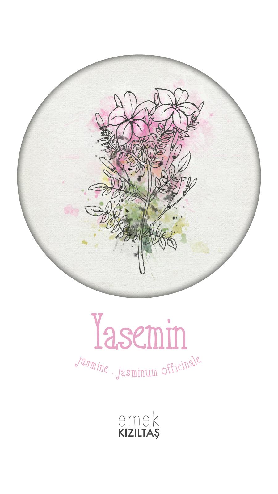 Cosmopolitan Turkey November 2018 Symbols Jasmine By Emekkiziltas Illustrations Editorialillustration Illustration Symbols Cosmopolit Jasmine Instagram