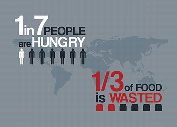 The Ironic Nature Of The World S Food Crisis Infographic World