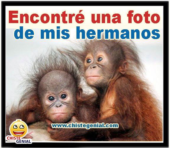 Encontré Una Foto De Mis Hermanos Chistes Funny Humor Y Memes