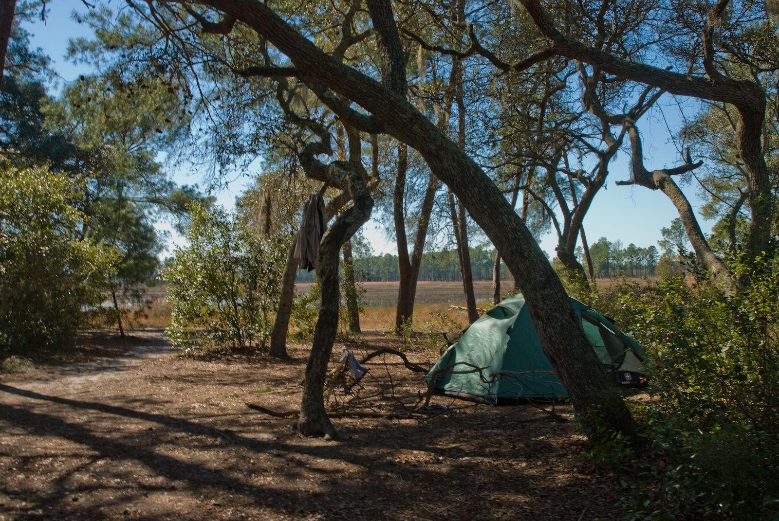 Ozark National Forest Dispersed Camping