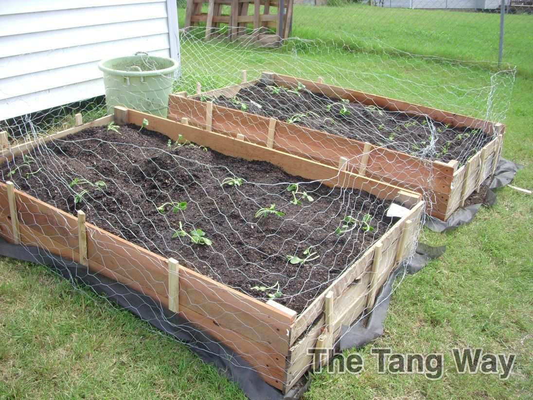 The Tang Way: How to Build a Raised Garden Bed! CHEAP ...