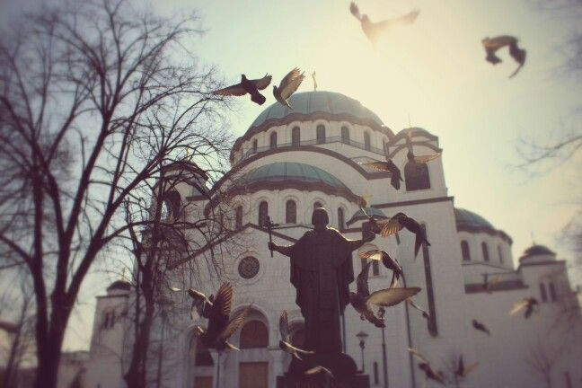 Belgrade Capital of Serbia • St saint Sava church • Church • Statue • Birds • Sky • Blue • Center Focus • God • It is one of the largest Orthodox churches in the world and ranks amongst the ten largest church buildings in the world.