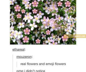 Pin By Abby Nicole On As Seen On Tumblr Funny Tumblr Posts Tumblr Funny Flowers