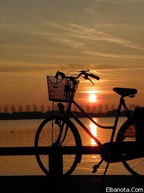 صور مميزة لغروب الشمس على شاطئ البحر بنوته كافيه Sunset Bicycle Beautiful Sunset