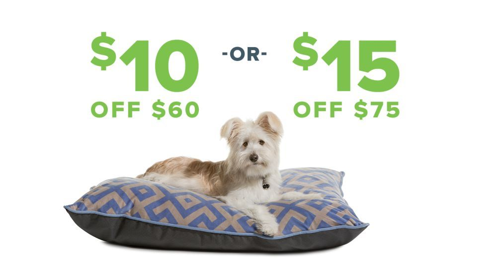 Pet Supplies Accessories And Products Online Petsmart Pet Supplies Happy Animals Online Pet Supplies