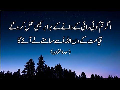 Very Beautiful Recitation of Quran Surah Luqman with Urdu
