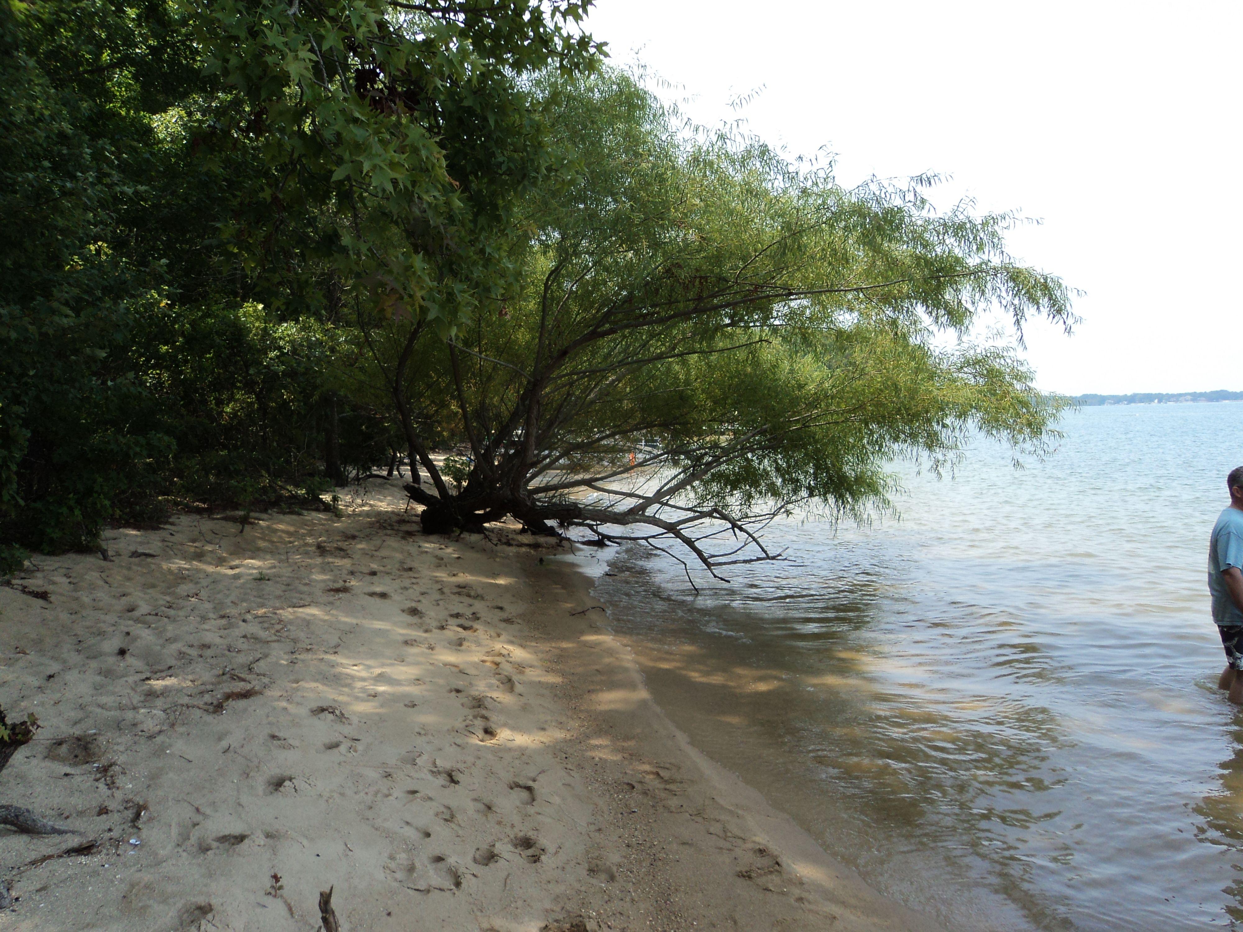 Sandy Beach On Lake Murray