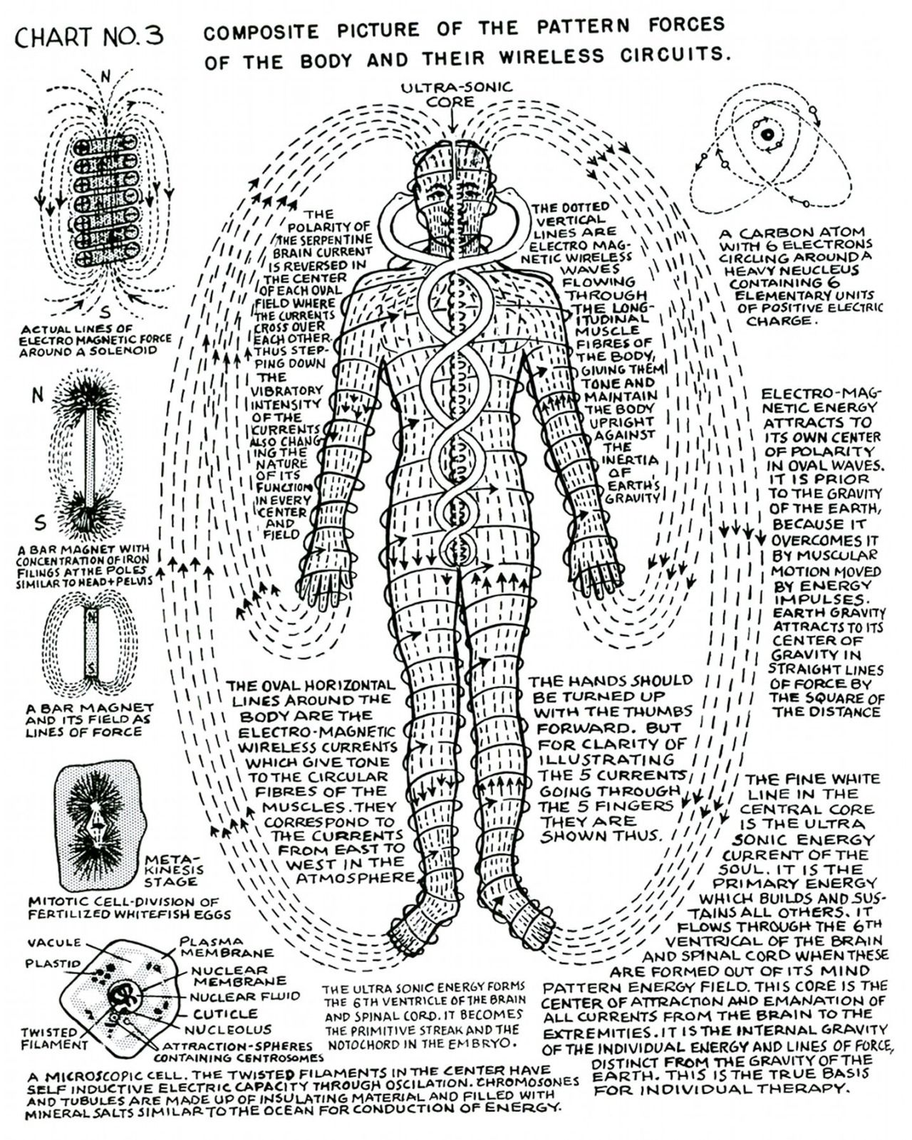 100% Online FREE Detox Guide E-Course | Pinterest | Therapy, Chart ...