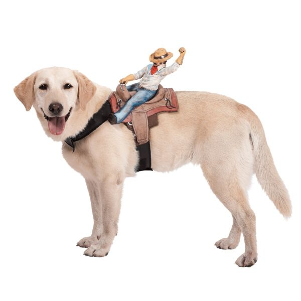 Dog Riders Harness Halloween Costume Cowboy Cute But Again I