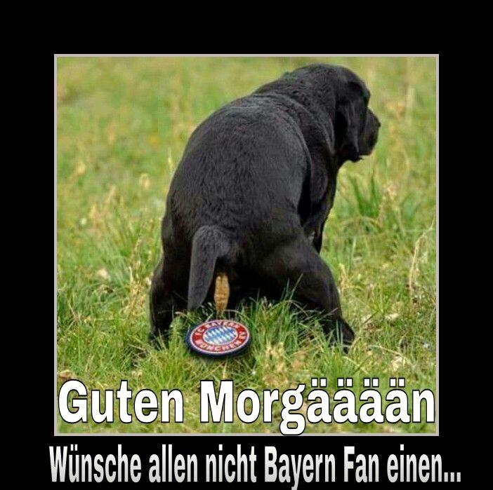 Guten Morgaaaan Scheiss Bayern Munchen Witzig Funny Jokes Und Bayern