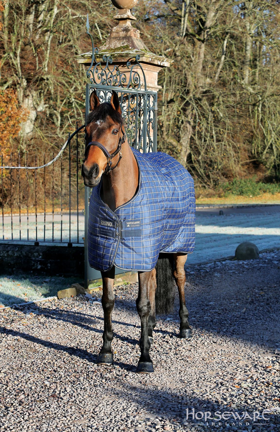 Le Rug From Horseware