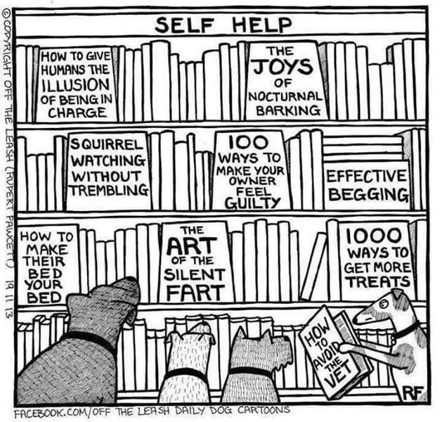 Self Help Books For Dogs Cartoon Dog Dogs Dog Quotes