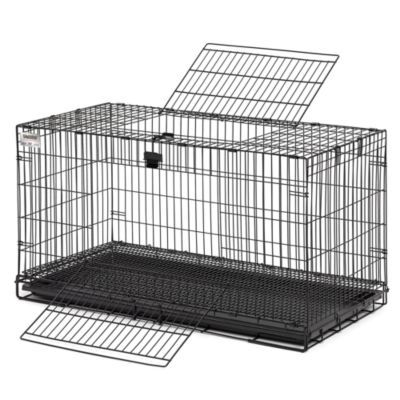 Midwest Homes For Pets Wabbitat 37 In W Rabbit Cage Rabbits For Sale New Zealand Rabbits